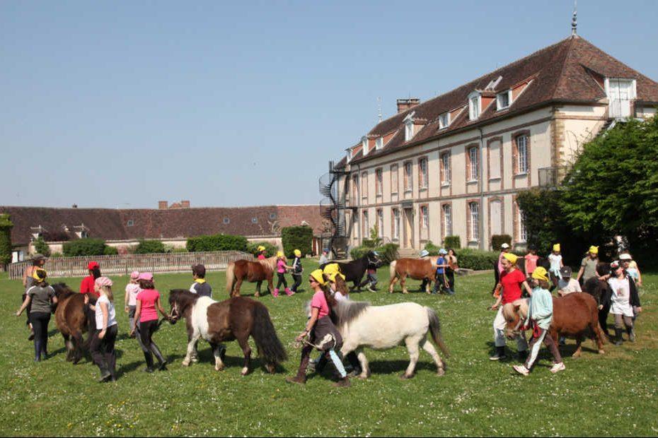 poney 4 saisons terrasses